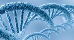 genoma_humano