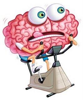 cerebro13
